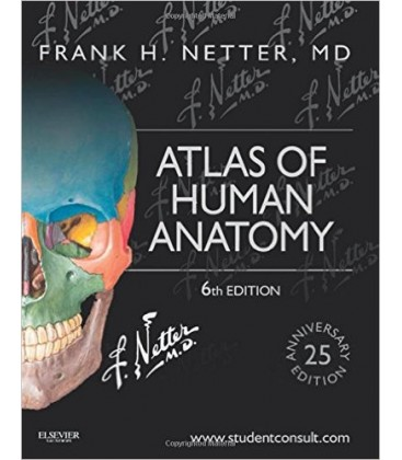 Atlas Of Human Anatomy 6th Edition Frank H Netter Gmrk Deposu