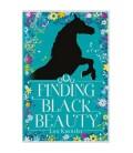 Finding Black Beauty - Lou Kuenzler