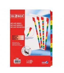 Globex Mylar Separator 6546 Months