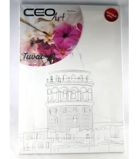 Ceo Art 35X50 Desenli Tuval Boyasız Galata Tu0002
