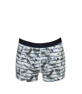 Mavi Erkek Boxer 090971-620