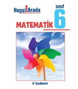 6. Sınıf Matematik Hepsi Bir Arada - Tudem