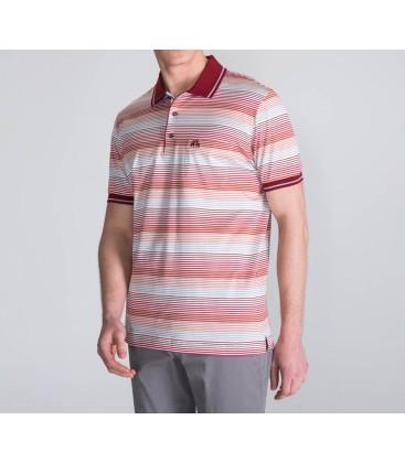 Karaca Erkek Regular Fit Polo Yaka Tişört  118106048
