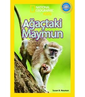 Ağaçtaki Maymun - National Geographic Kids