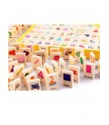 Learning Toys Knowledge Dominoes