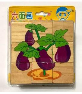 6 Farklı Bitki Dizgi Çeşitli Ahşap Küp Puzzle