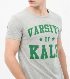 Koton Erkek Yazı Baskılı T-Shirt - Gri 6KAM11779LK027