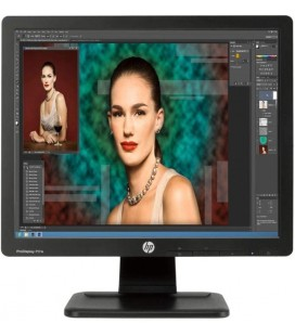 "HP ProDisplay P17A 17"" TN LED Monitör"
