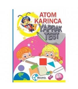 1. Sınıf Atom Karınca Yaprak Test Molekül Yayınları