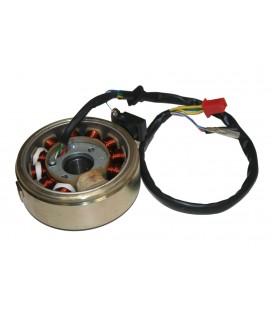 CFMoto Benzin Pompası 7020-150900 Yakıt Pompası