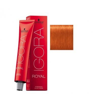 Igora Royal Saç Boyası 8.77 Açık Kumral Yoğun Bakır
