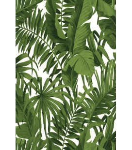 Zümrüt Joven 7845 Tropikal Çiçek Desen Duvar Kağıdı 5,33 m²